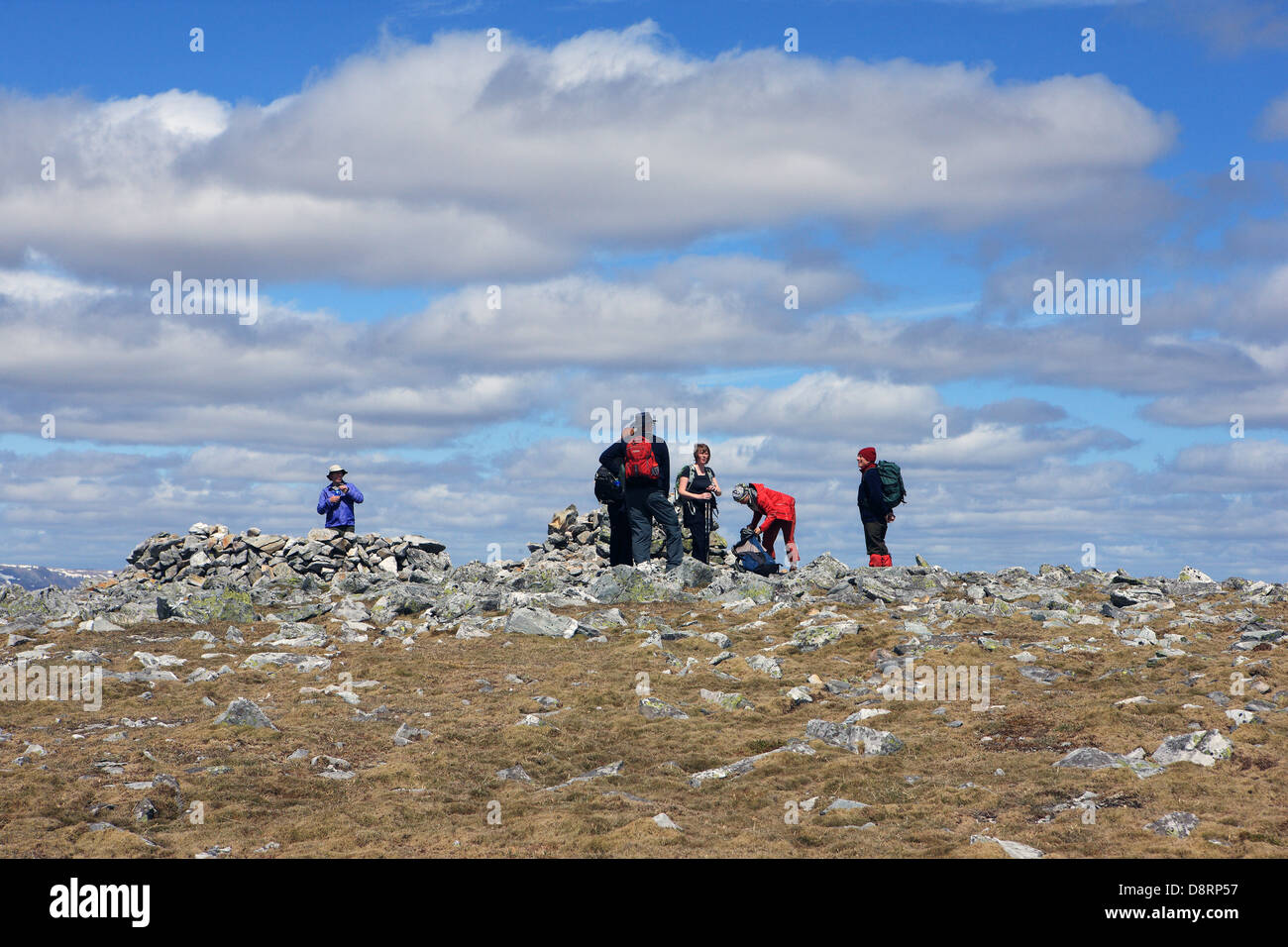 Walkers at the summit cairn of Carn a'Gheoidh (975m) at Glenshee in the Scottish Highlands - Stock Image
