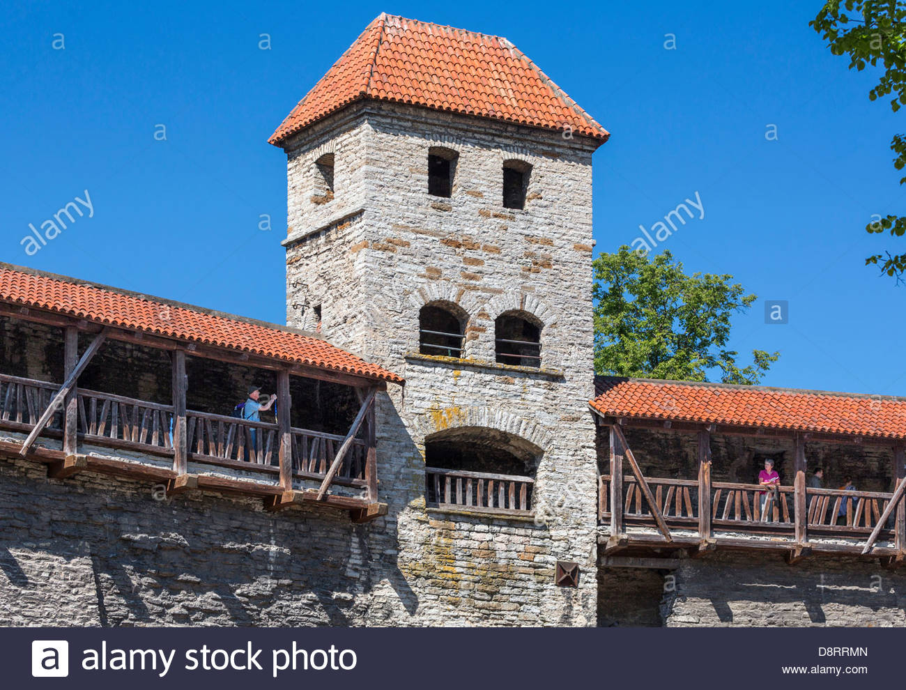 Tallinn medieval town city wall, watch tower - Stock Image