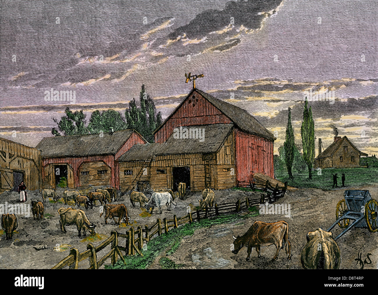 Cattle and barns of a Canadian homestead about 1850. Hand-colored woodcut - Stock Image