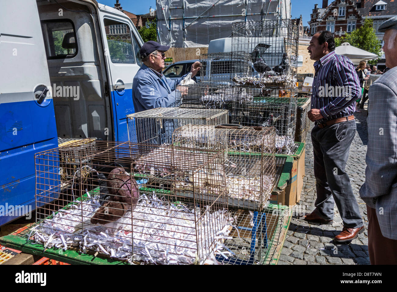 Stallholder at poultry stand selling chickens in cages to immigrant at domestic animal market in Europe - Stock Image