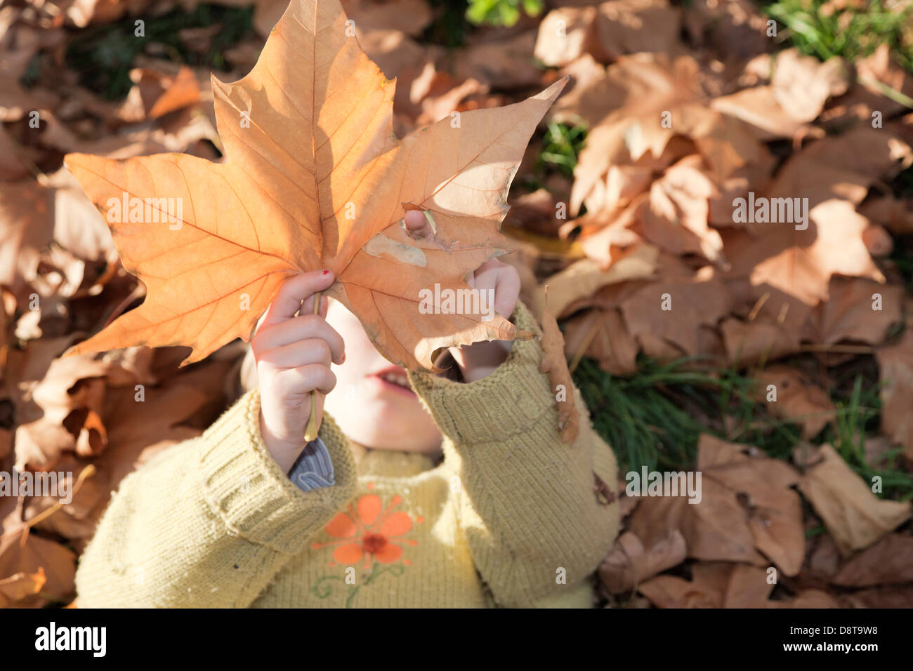 Seven year-old girl lying on the ground, sticking her finger through an autumn leave - Stock Image