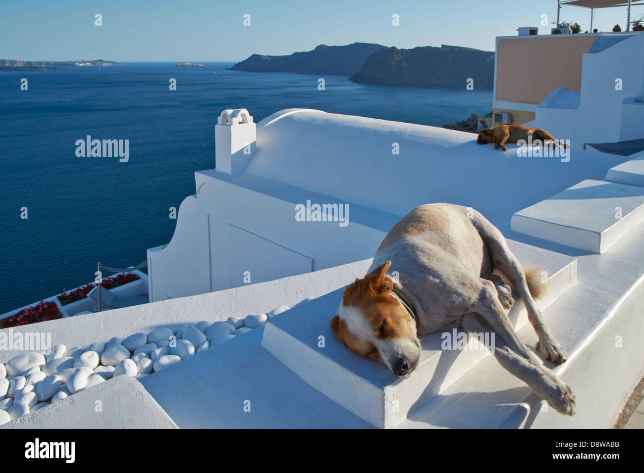 Santorini - Stock Image