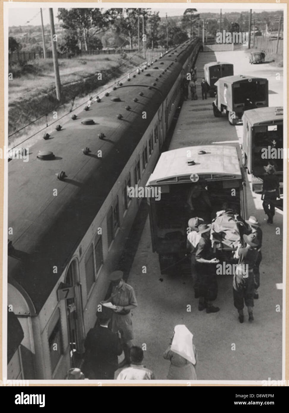 Ambulance train at Rosehill transferring wounded into ambulance, Rosehill, NSW - Stock Image