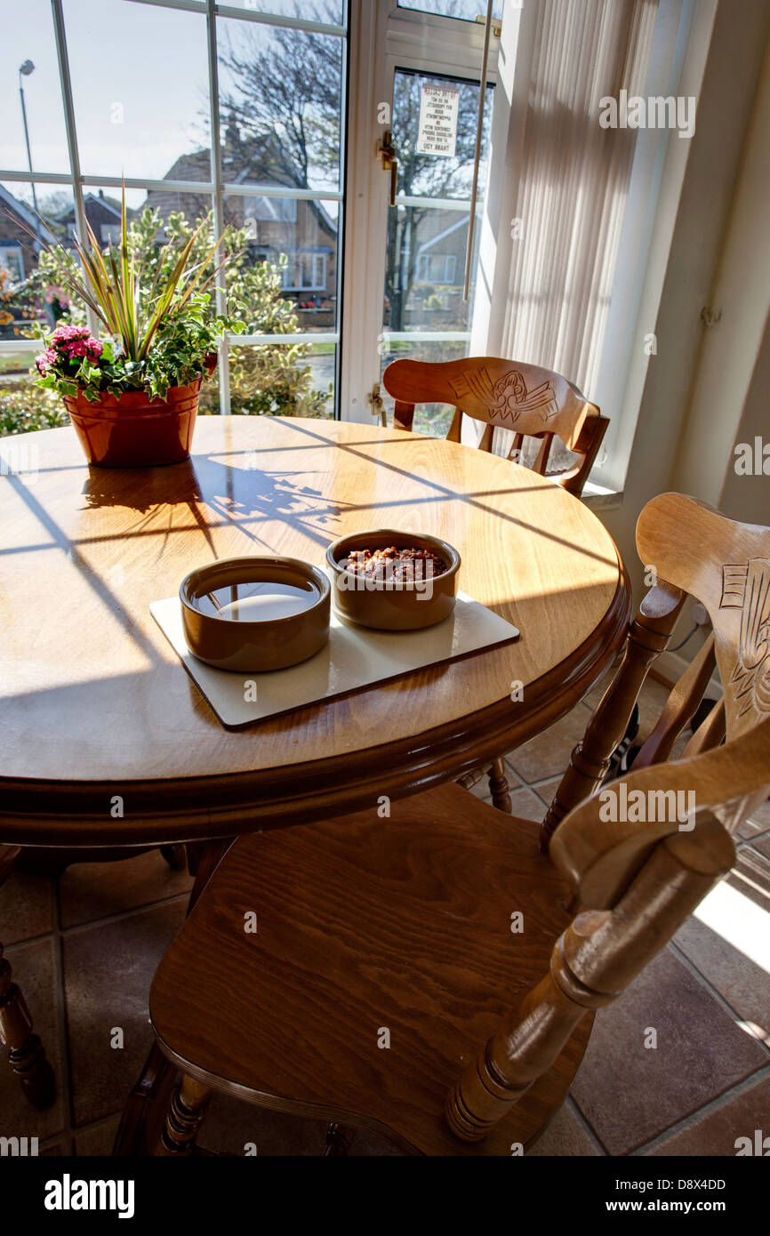 Image from Arcanum series showing dog bowls set at table, open to viewers interpretation. - Stock Image