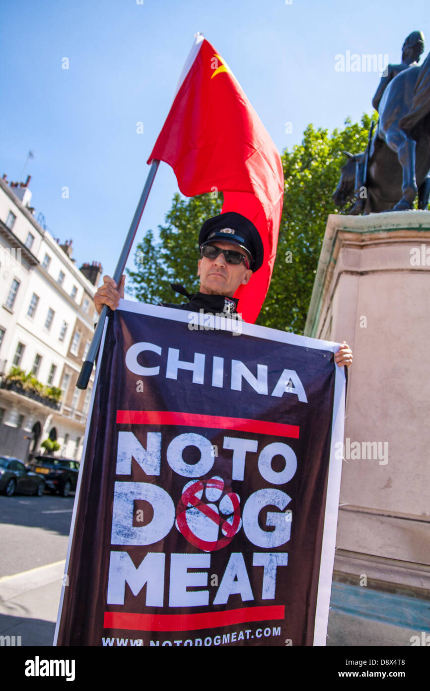 London, UK. A No To Dog Meat campaigner protests outside the Chinese embassy against the trade in dog and cat meat - Stock Image