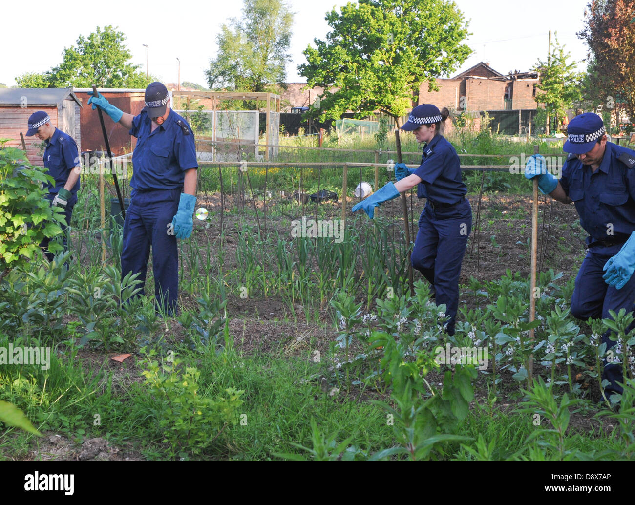 Muswell Hill, London, UK. 5th June 2013. Police officers conduct a search of allottments with the attacked community - Stock Image