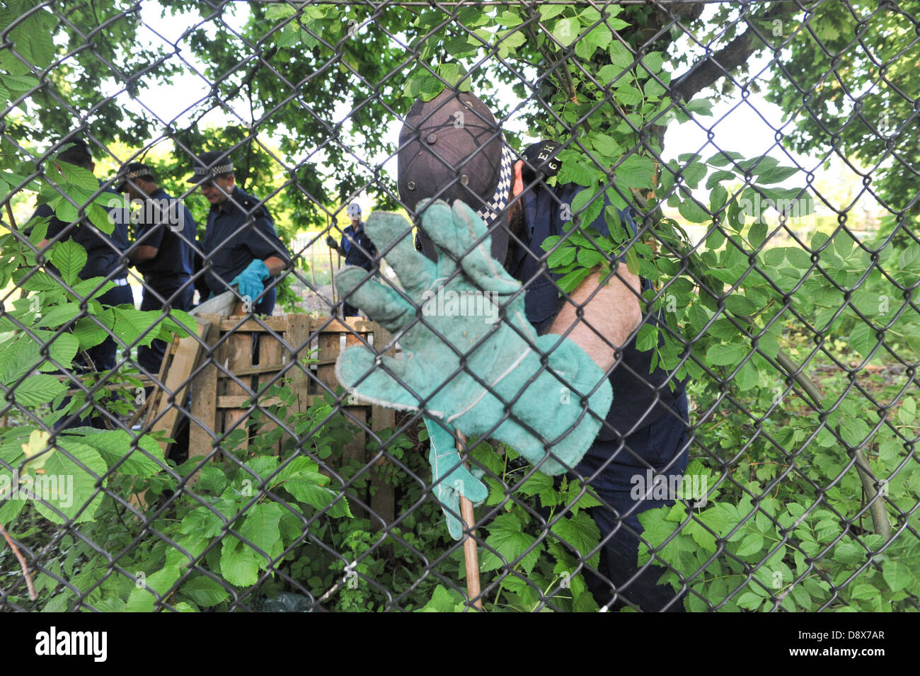 Muswell Hill, London, UK. 5th June 2013. Police officers conduct a search of allottments near the attacked community - Stock Image