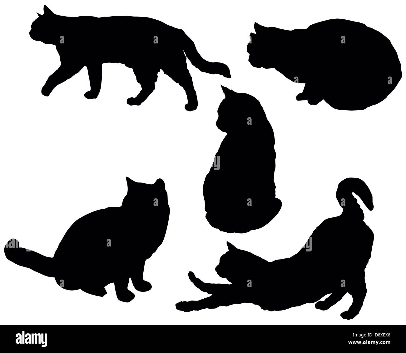 Set of a posing cats vector silhouettes - Stock Image