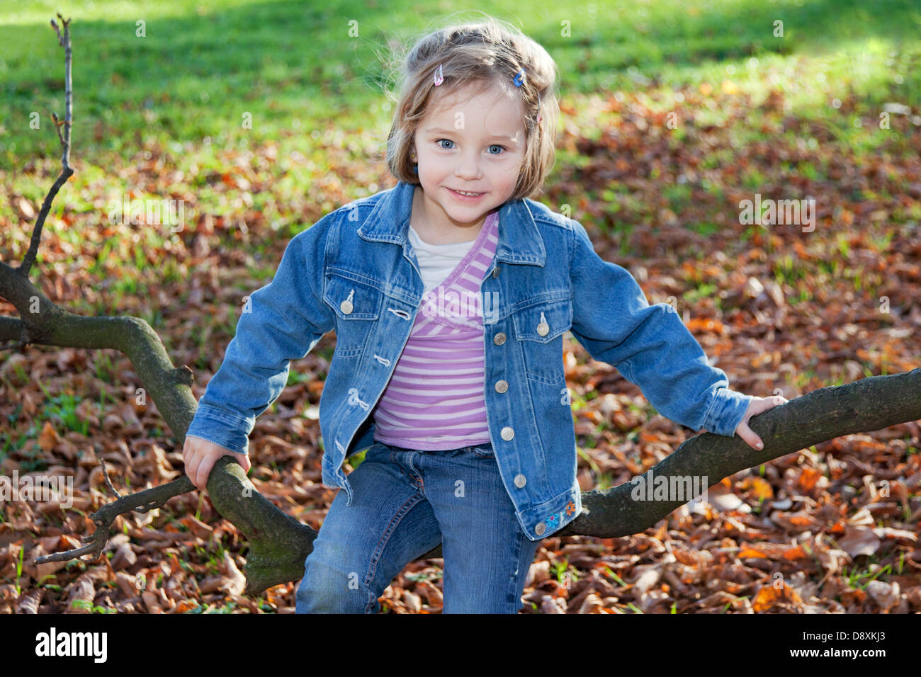 Four year-old girl sitting on a branch - Stock Image