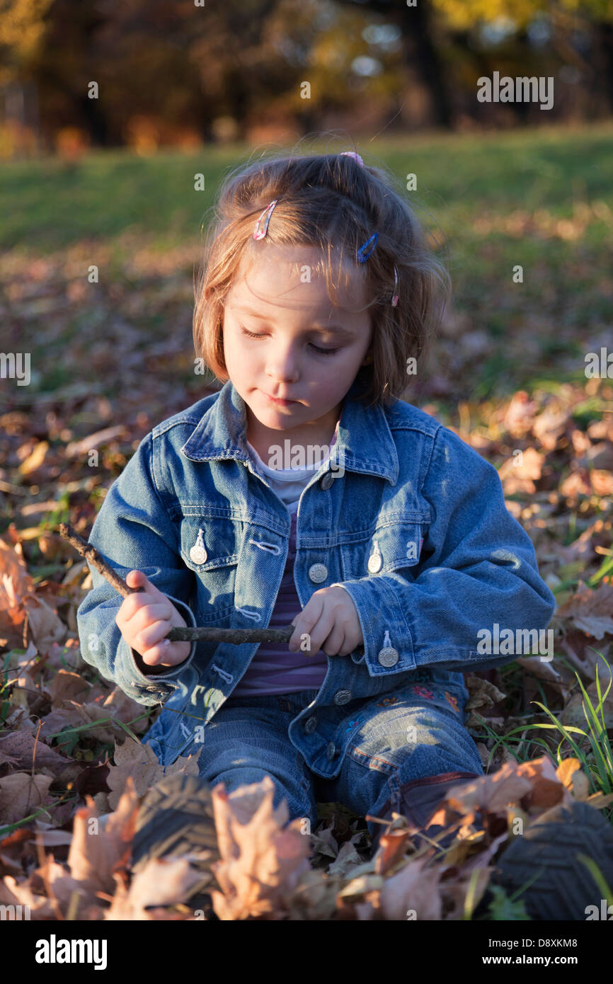Four year-old girl sitting in autumn leaves - Stock Image