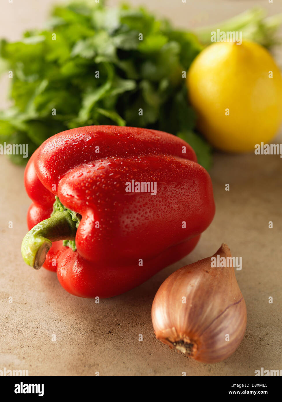 Red pepper,onion,lemon and parsley - Stock Image