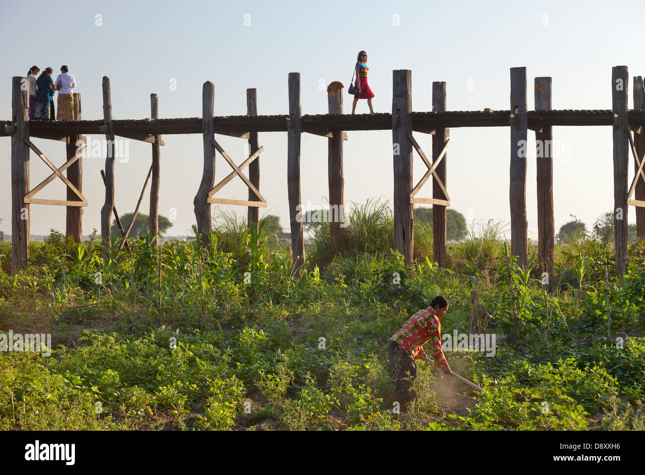 Well-dressed woman Crossing U Bein Teak Bridge across Taungthaman Lake, Myanmar, with farmer toiling in foreground - Stock Image