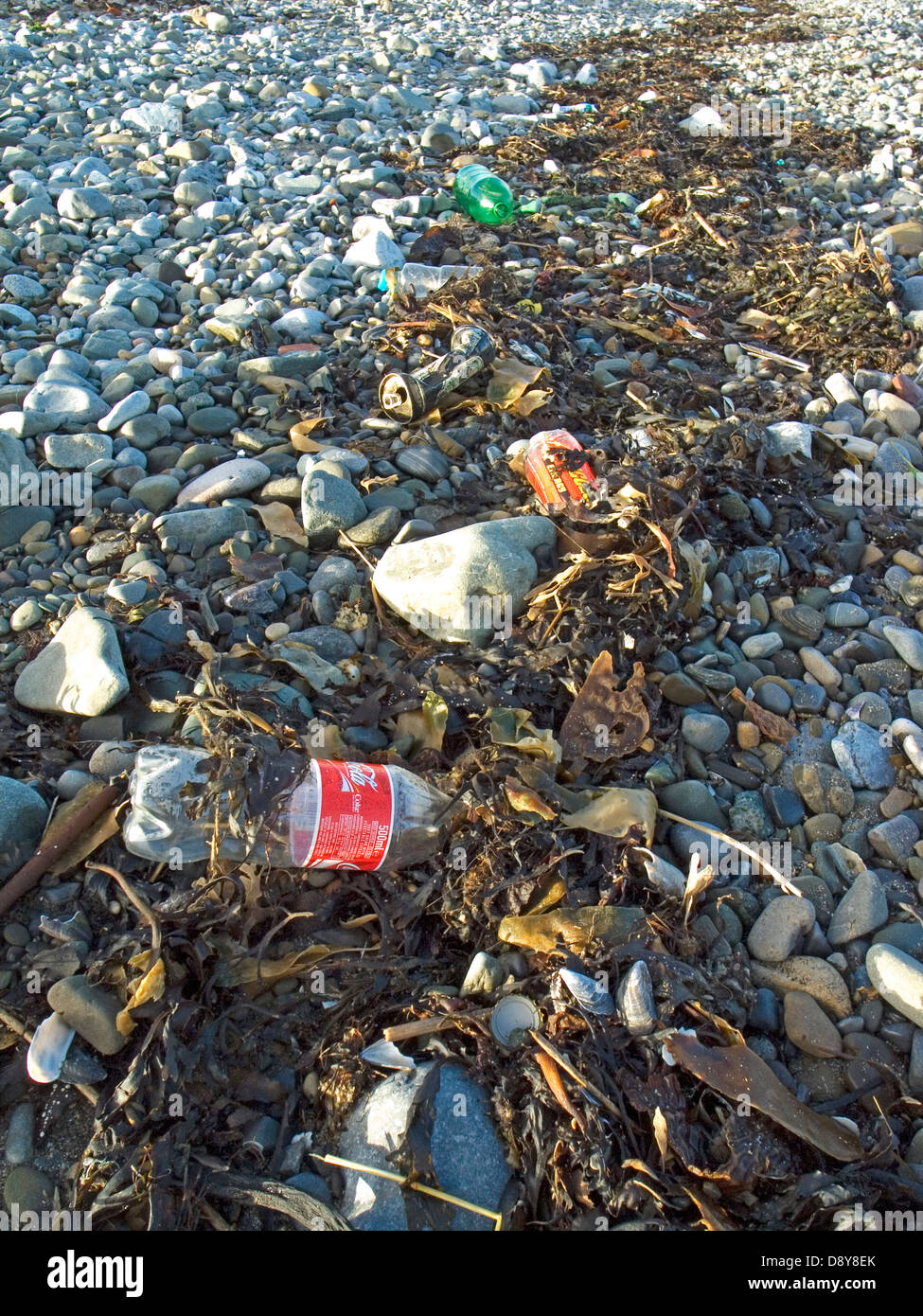 Plastic bottles and other refuse caught up in the seaweed on an Irish Beach Stock Photo