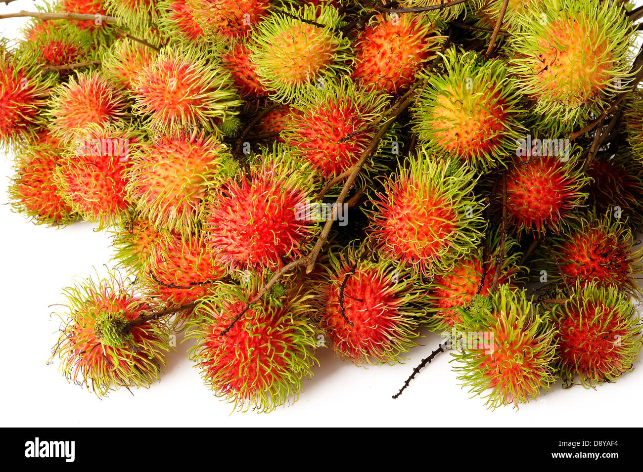 Rambutan fruits on white background - Stock Image