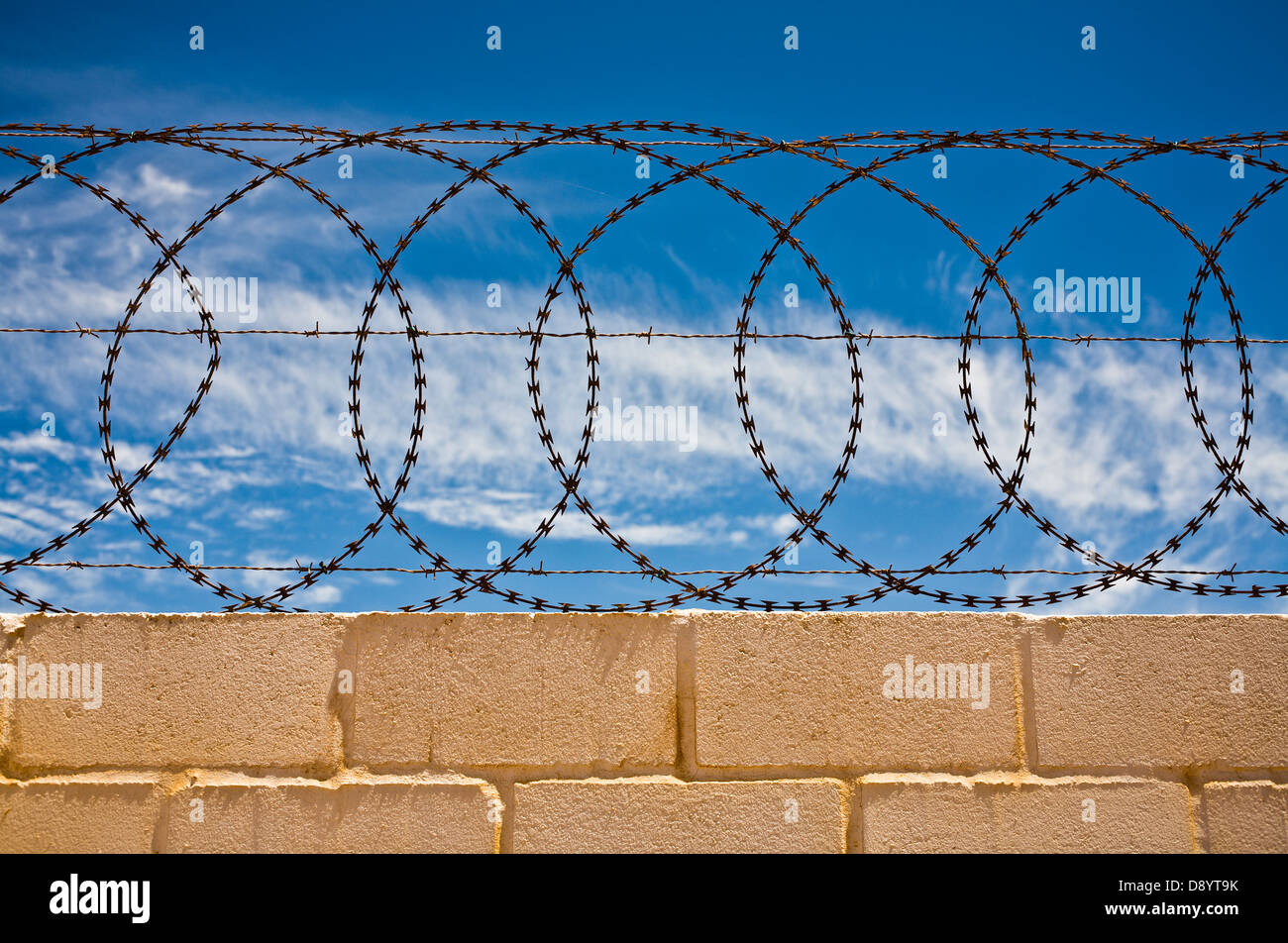 Barbed wire on a wall, South Africa Stock Photo: 57160143 - Alamy