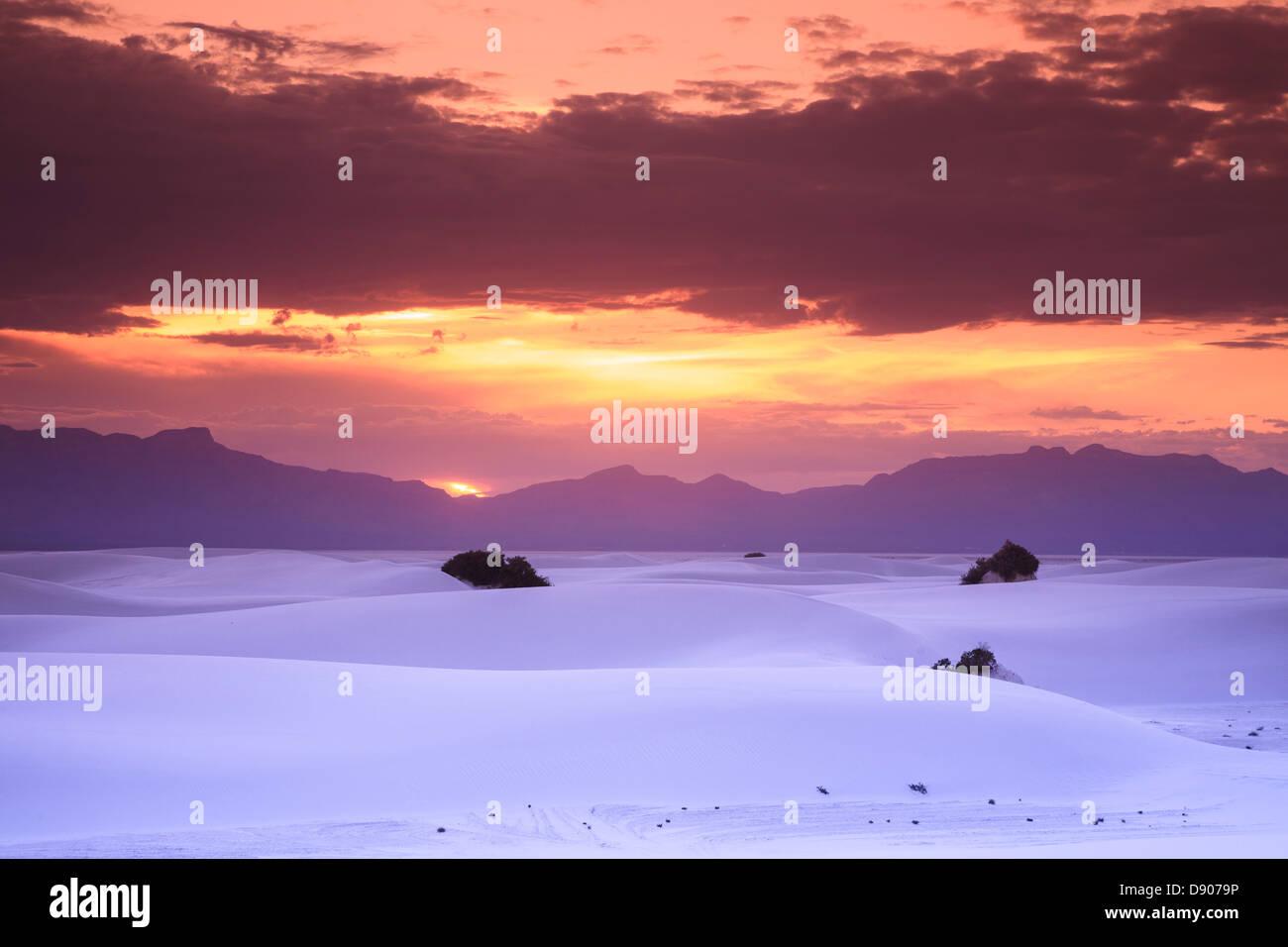 USA, New Mexico, White Sands National Monum - Stock Image