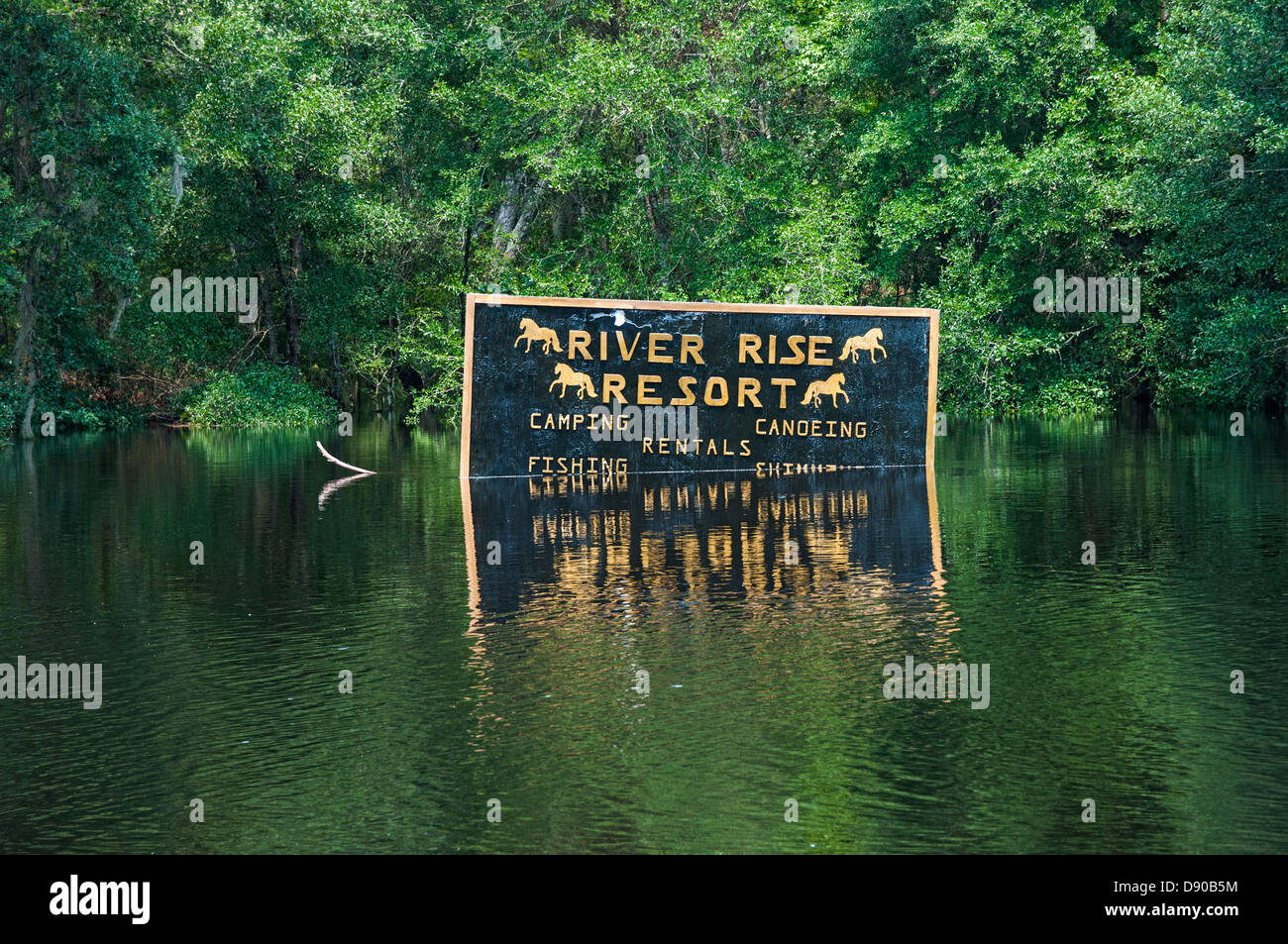 Flooding after Tropical Storm Debby hit North Central Florida 6-12. Stock Photo