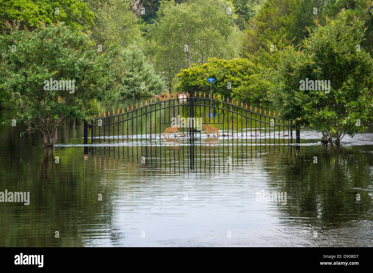 Flooding after Tropical Storm Debby hit North Central Florida 6-12. - Stock Image