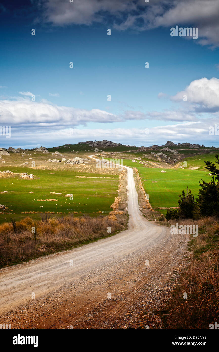 Country Road Otago New Zealand - Moonlight Road, between Macraes Flat and Middlemarch, Otago, New Zealand... - Stock Image