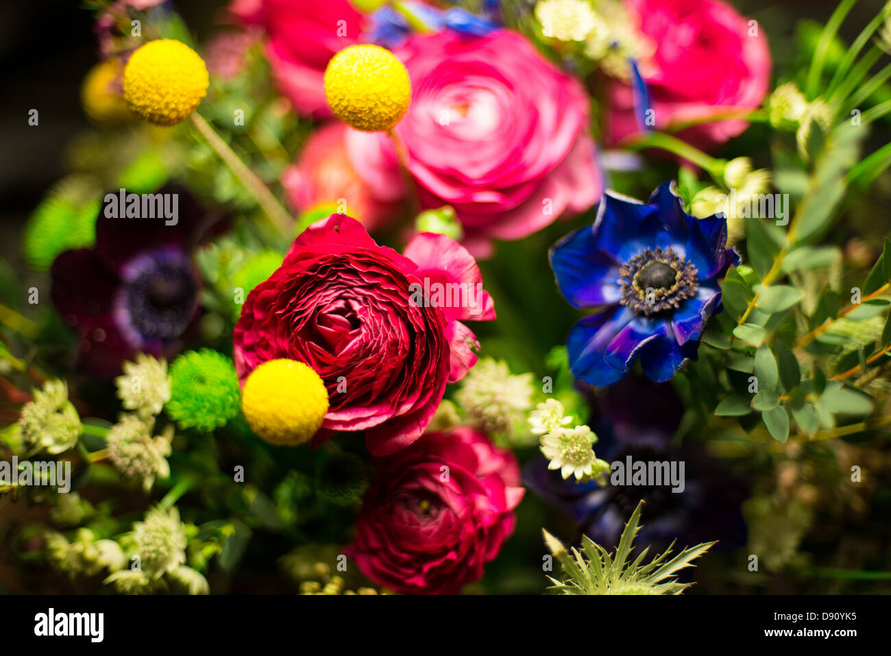 flowers, posey 2 - Stock Image