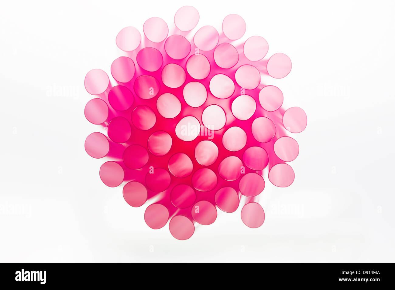 Studio shot of pink drinking straws - Stock Image