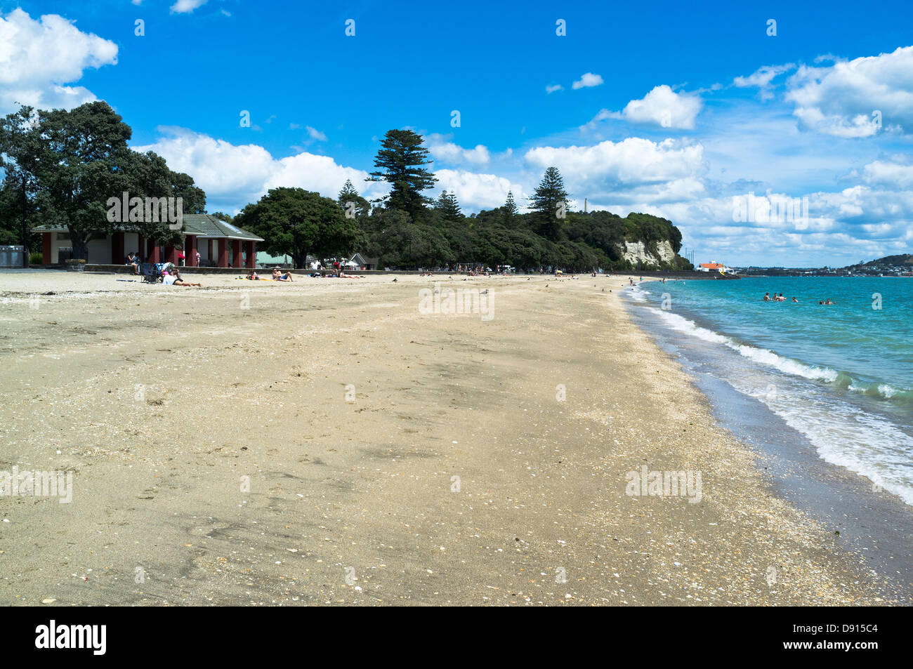 Dh mission bay beach auckland new zealand sea gull and - Mission bay swimming pool auckland ...