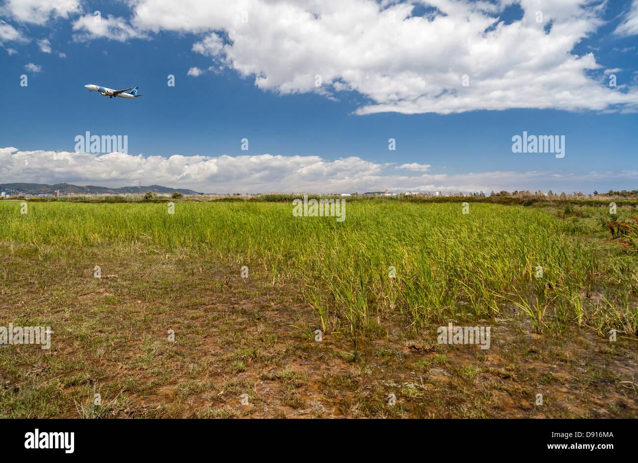 el prat de llobregat,catalonia,spain - Stock Image