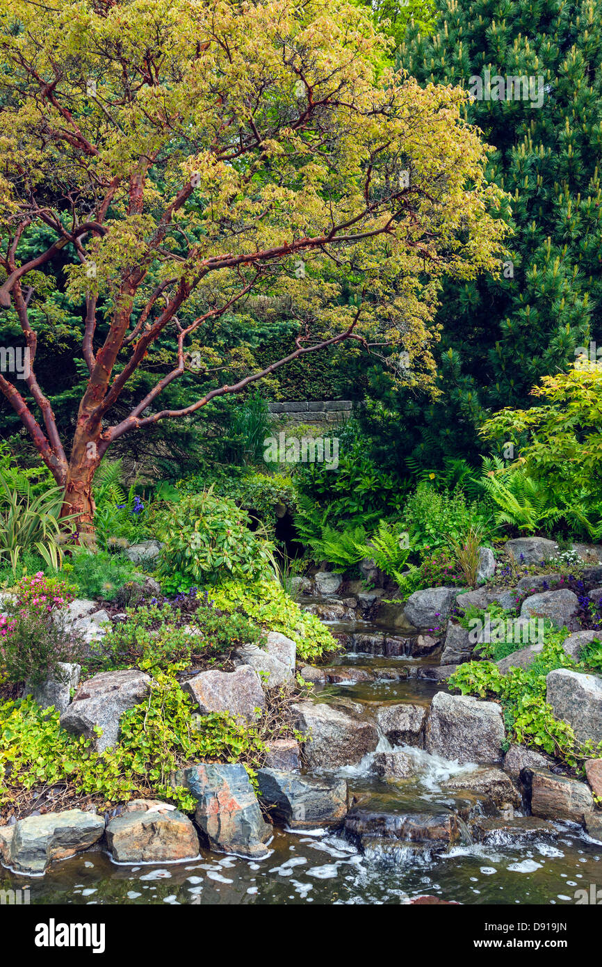 Detail from the ornamental garden at Pollok Country Park, near Glasgow, Scotland, UK - Stock Image