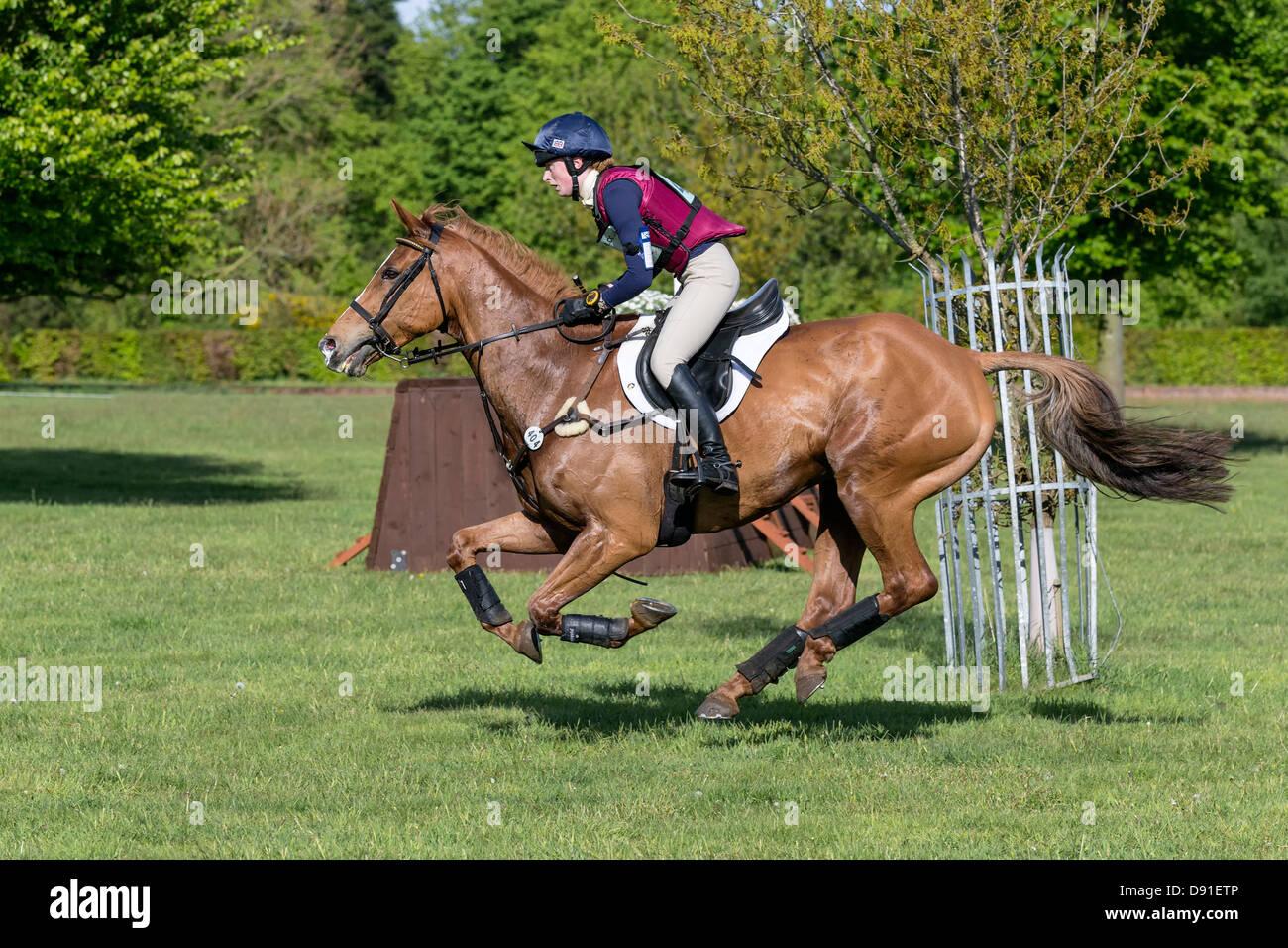 Mary Edmundson on Mr Mystery Man - Houghton International Horse Trials 2013 - Stock Image