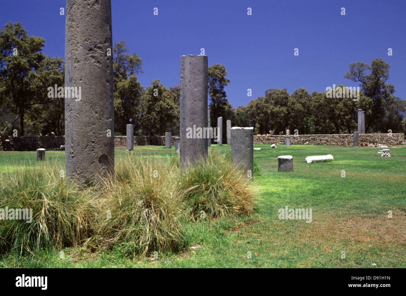 Ancient pillars at the Ashkelon National Park in the coastal city of Ashkelon in the Southern District of Israel - Stock Image