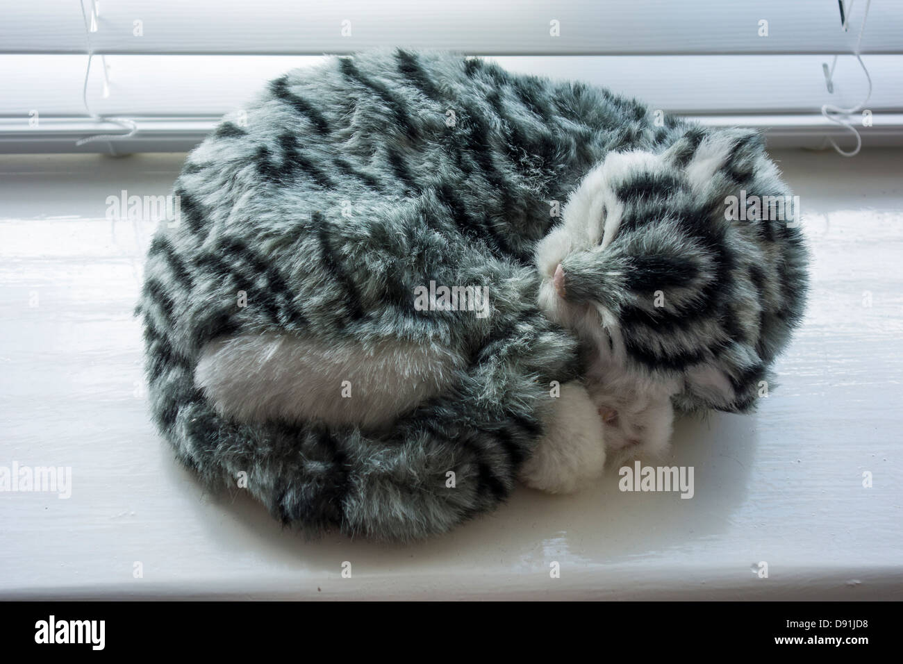 Realistic Toy Kitten Asleep in on Window Sill - Stock Image
