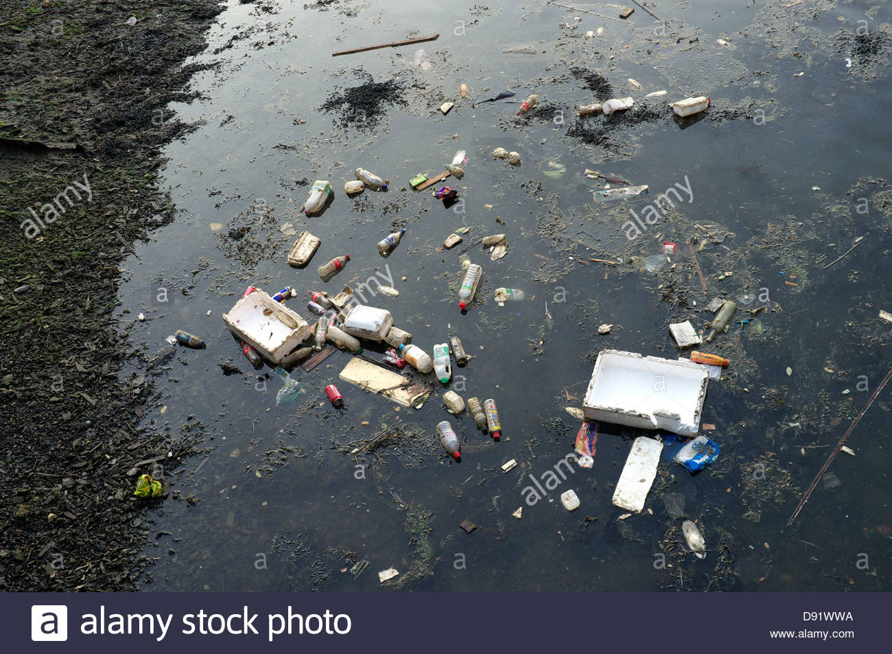Plastic and polystyrene rubbish in the water of Camber Quay, Portsmouth, Hampshire, UK. - Stock Image