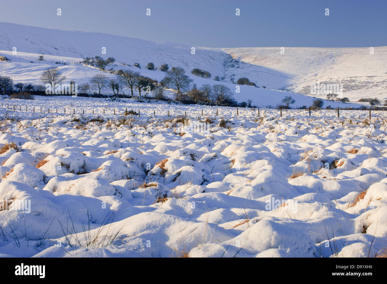 Mynachlogddu Preseli Hills Pembrokeshire West Wales in snow - Stock Image