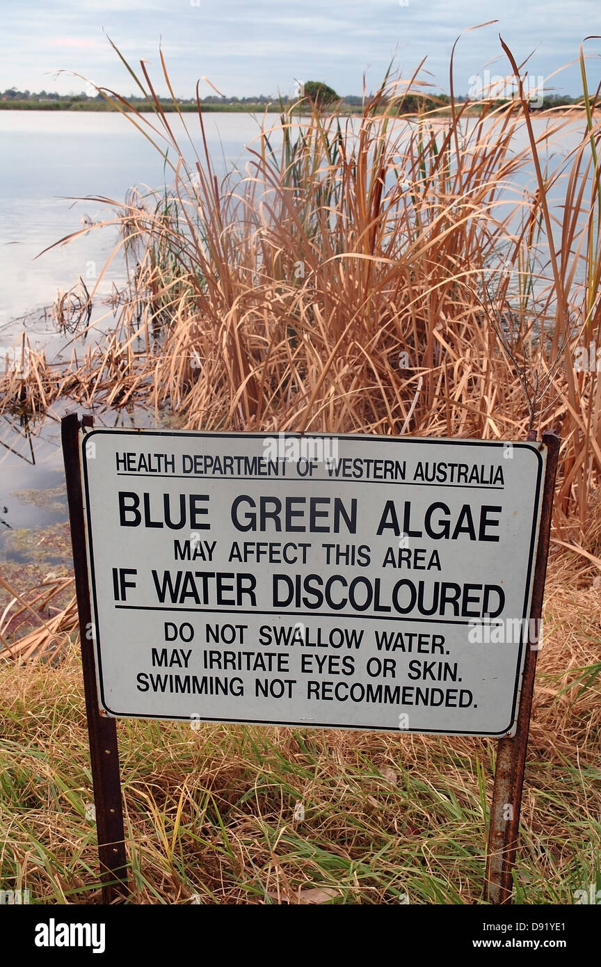 Sign warning of possibility of toxic algal blooms, Herdsman Lake Reserve, Perth, Western Australia - Stock Image