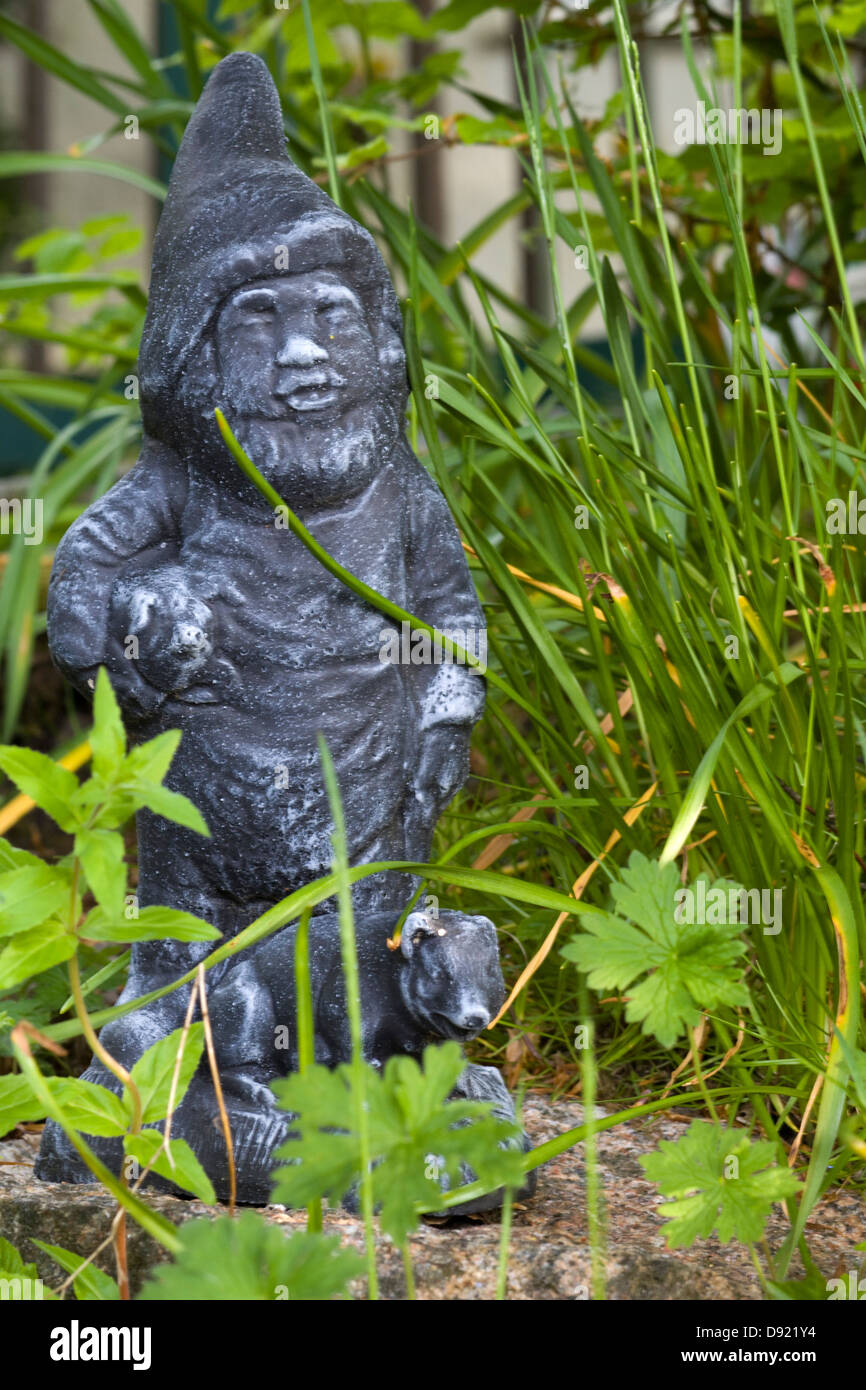 A garden gnome in amongst wild flowers - Stock Image