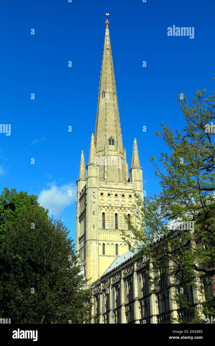 Norwich Cathedral Spire, Norfolk, England UK, English medieval cathedrals spires - Stock Image