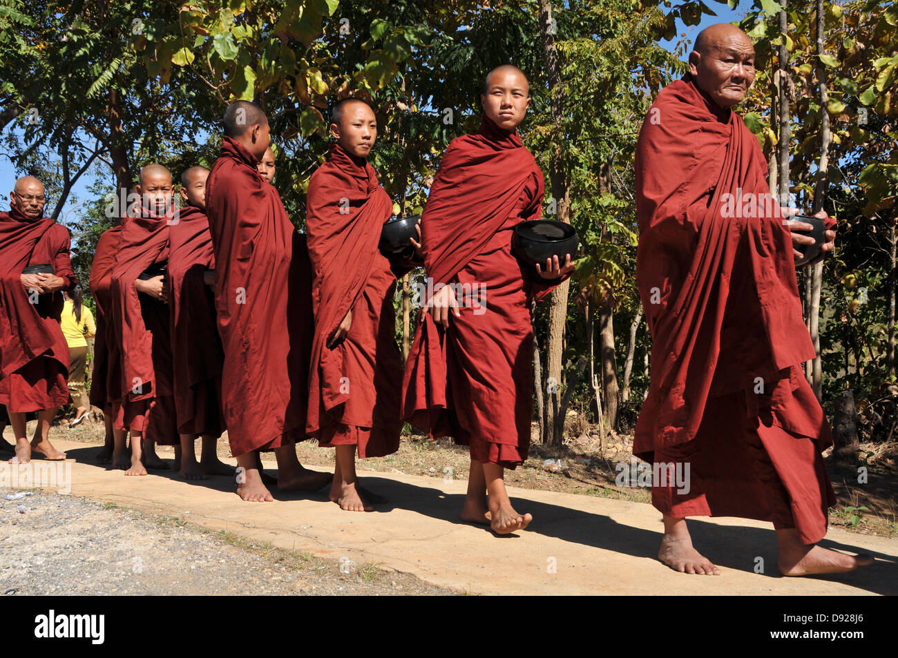 Buddhist Monks collecting alms at December full moon festival, Nyaungshwe, Inle Lake, Shan State, Myanmar Stock Photo