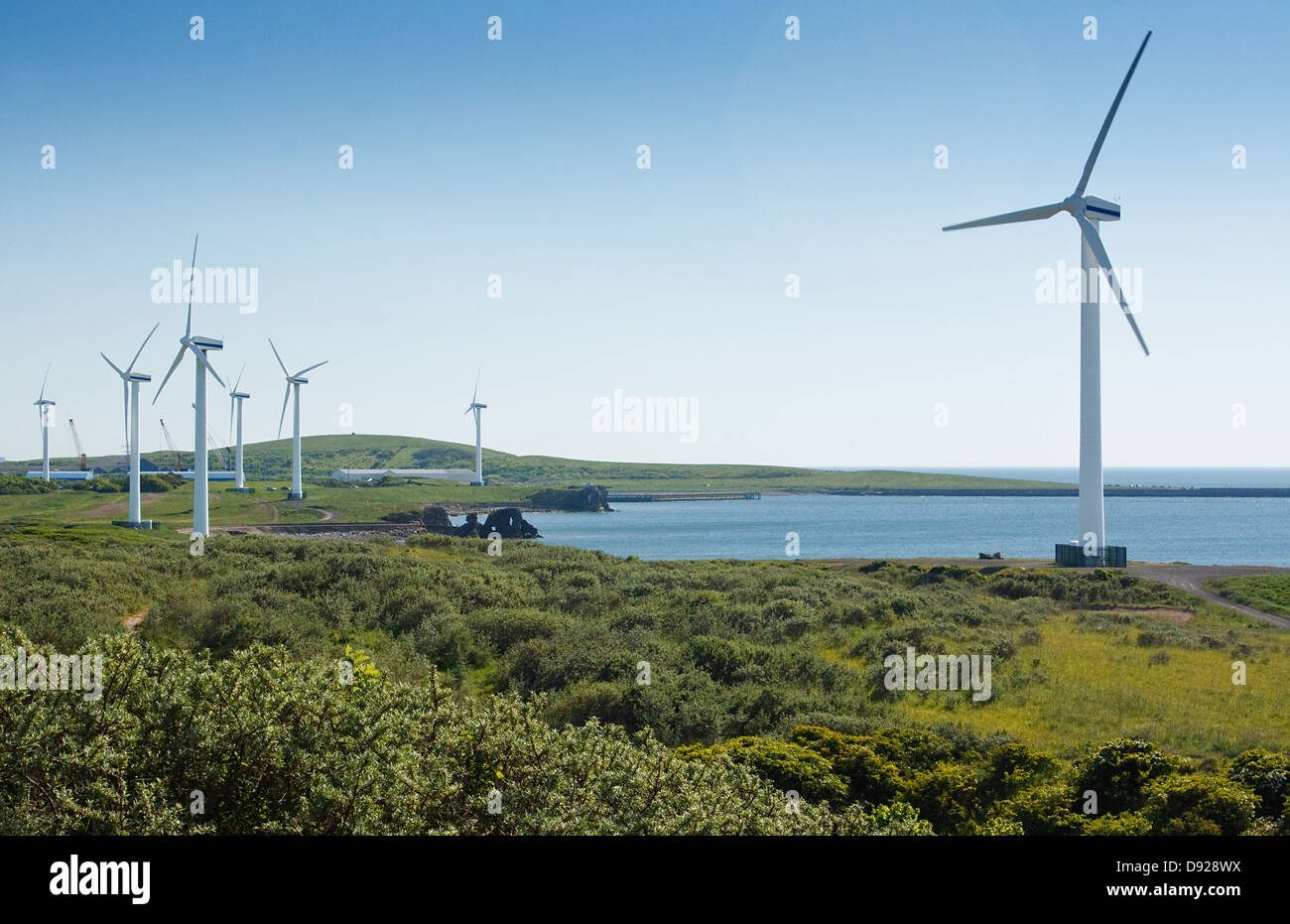 Coastal wind farm used to harness renewable wind power into mechanical energy to generate electricity. - Stock Image
