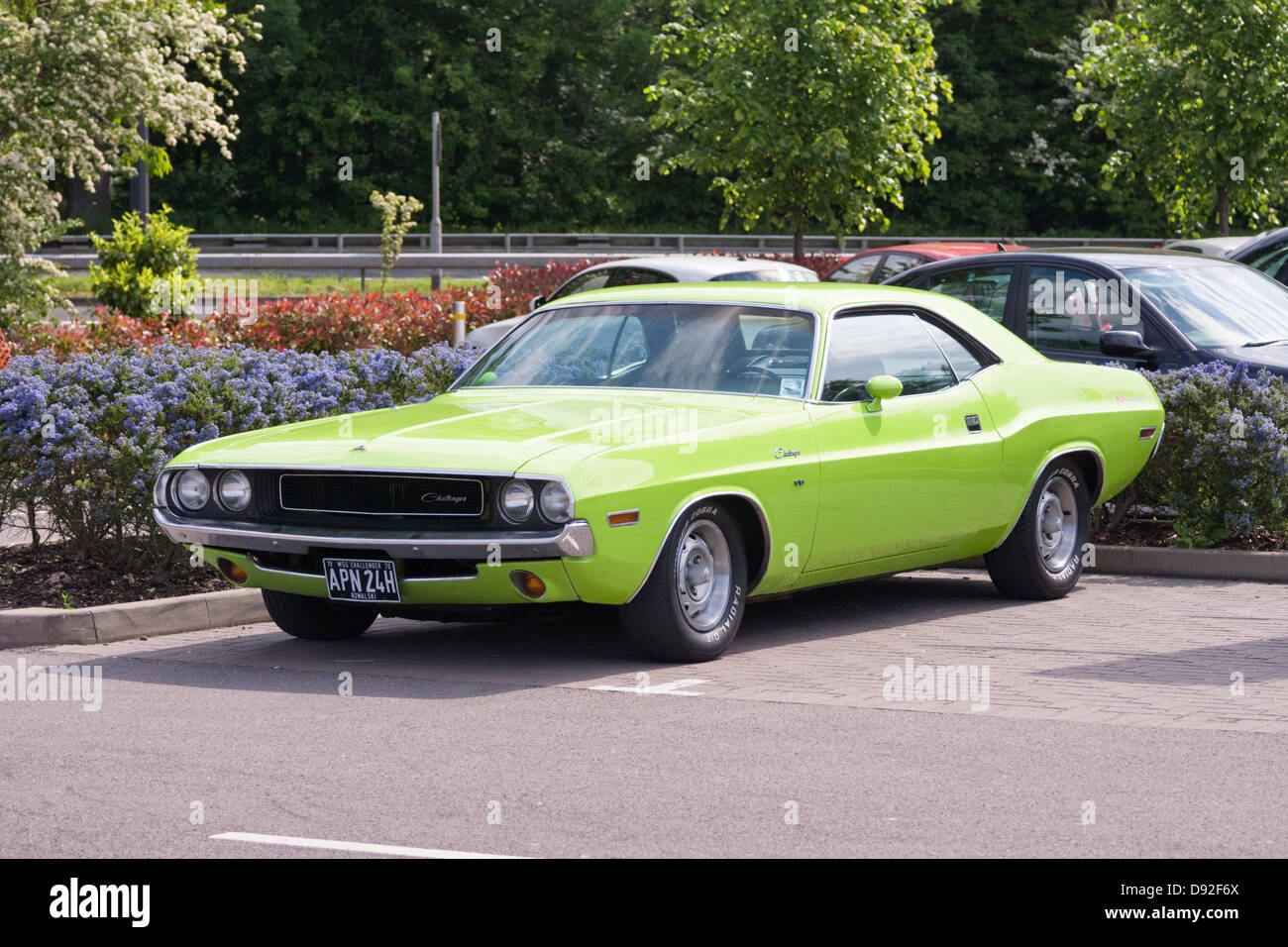 Classic American Car 1970 Dodge Challenger Stock Photo 57218866 Alamy