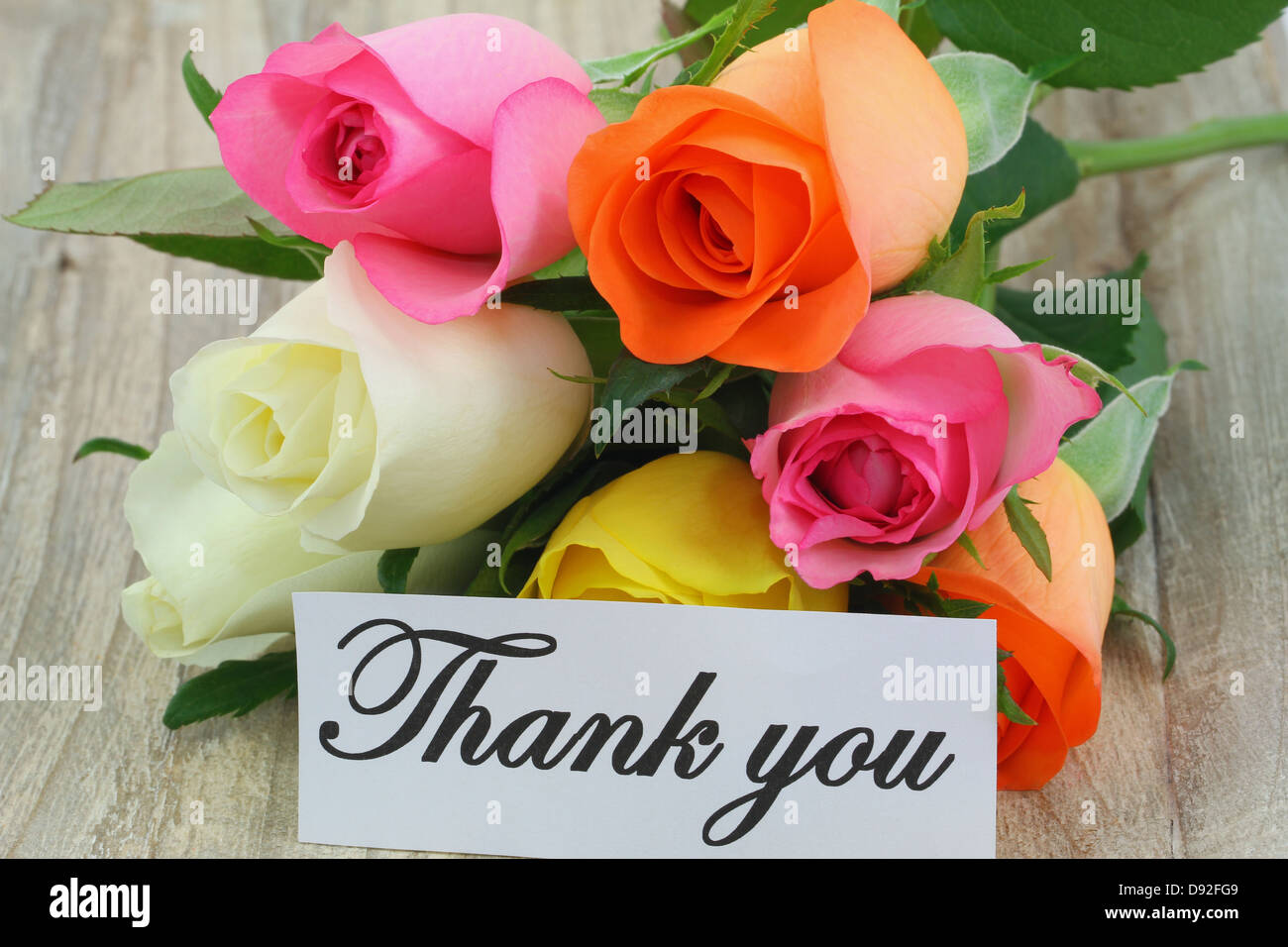 Thank you note and colorful bouquet of roses Stock Photo: 57219129 ...
