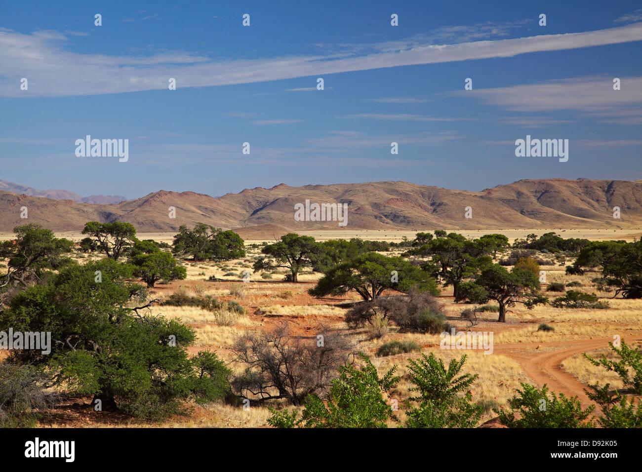 Ranch Koiimasis, Tiras Mountains, Southern Namibia, Africa - Stock Image