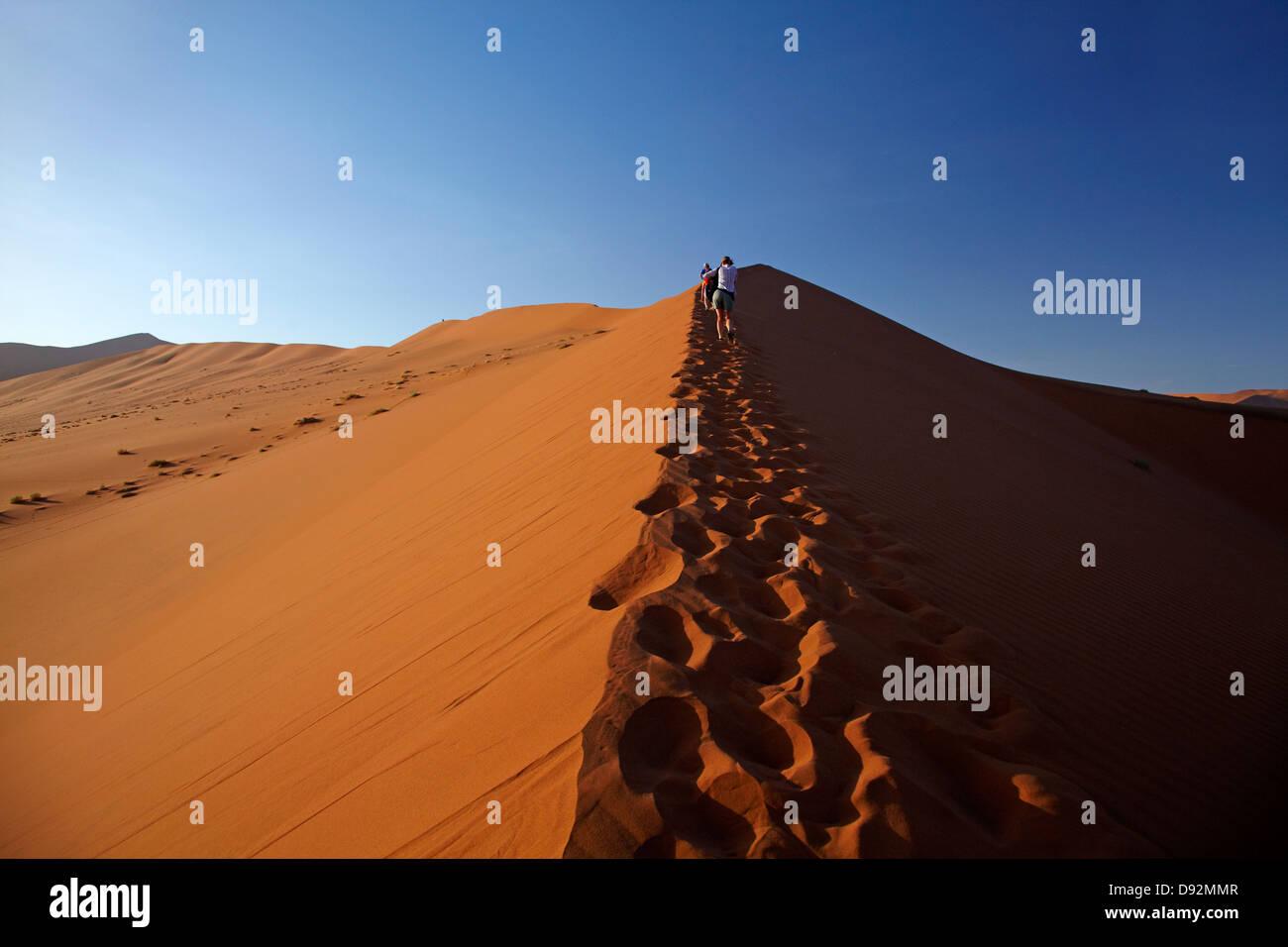 Family climbing sand dune beside Deadvlei, near Sossusvlei, Namib-Naukluft National Park, Namibia, Africa - Stock Image