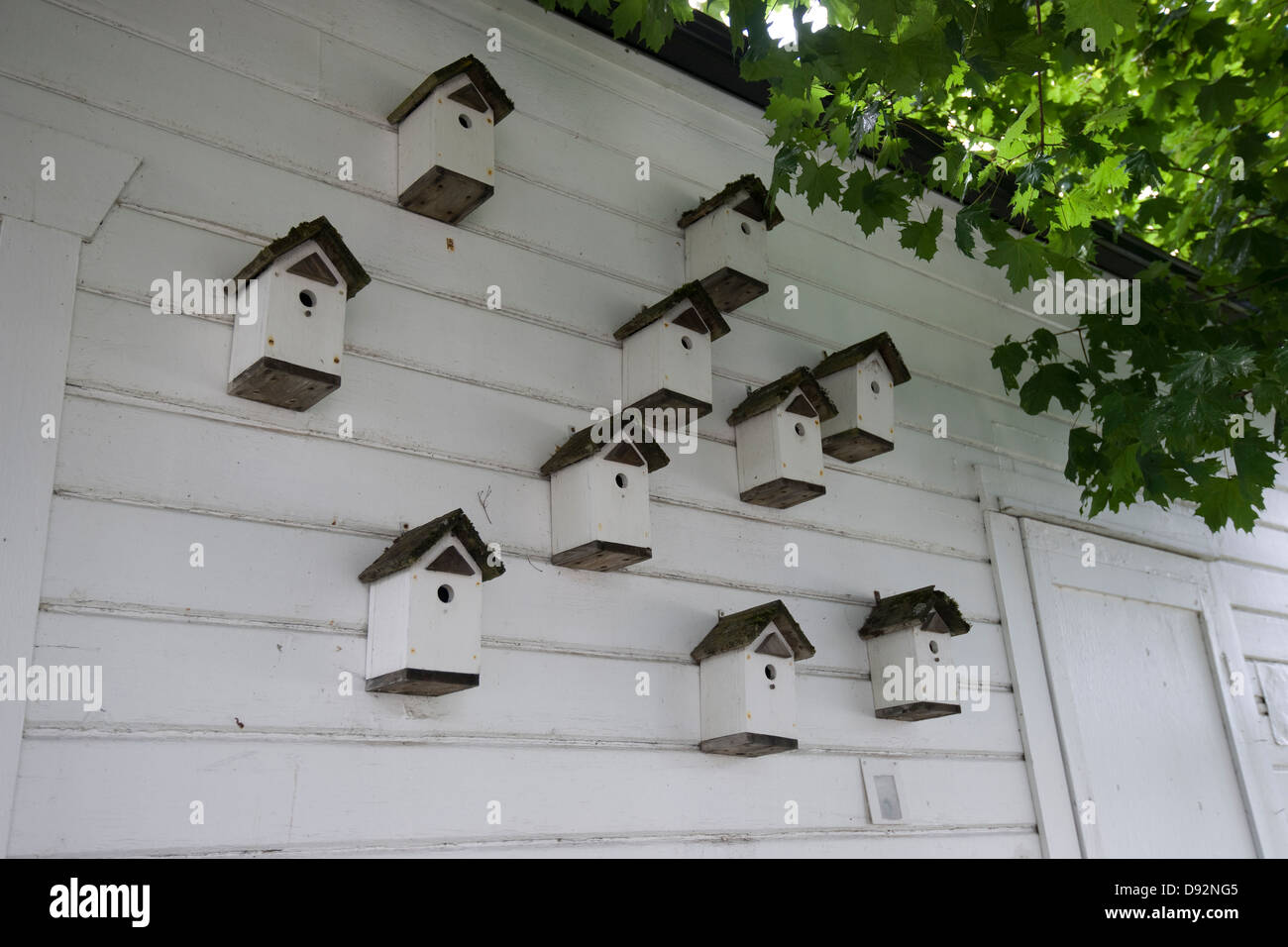 ten identical birdhouses on the side of a house - Stock Image