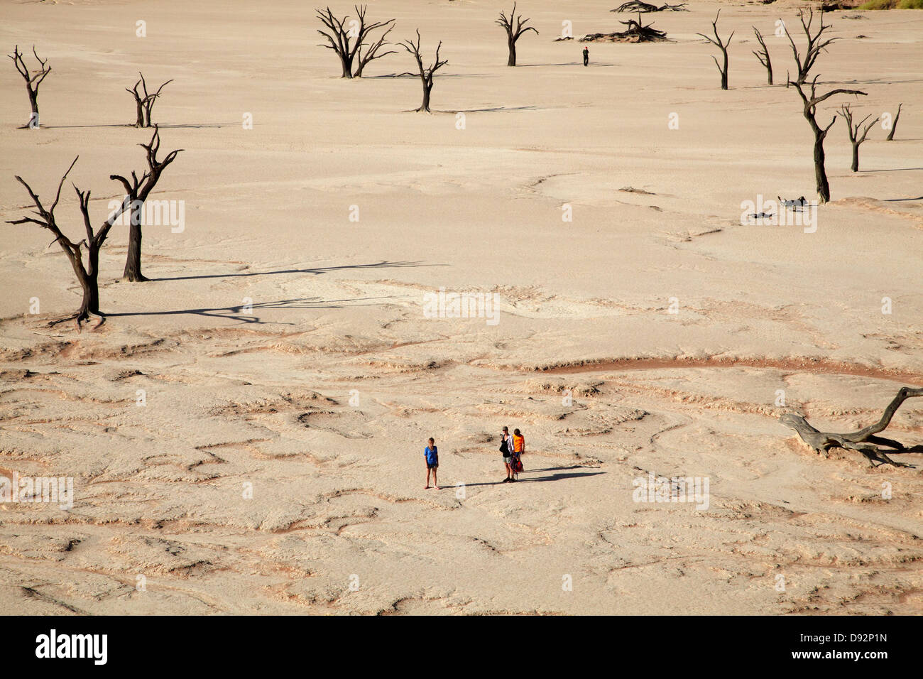 Dead trees (thought to be 900 years old), tourists, and sand dunes at Deadvlei, Namib-Naukluft National Park, Nambia, - Stock Image