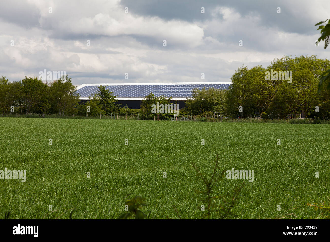 Solar panels on large farm building Hampshire UK - Stock Image