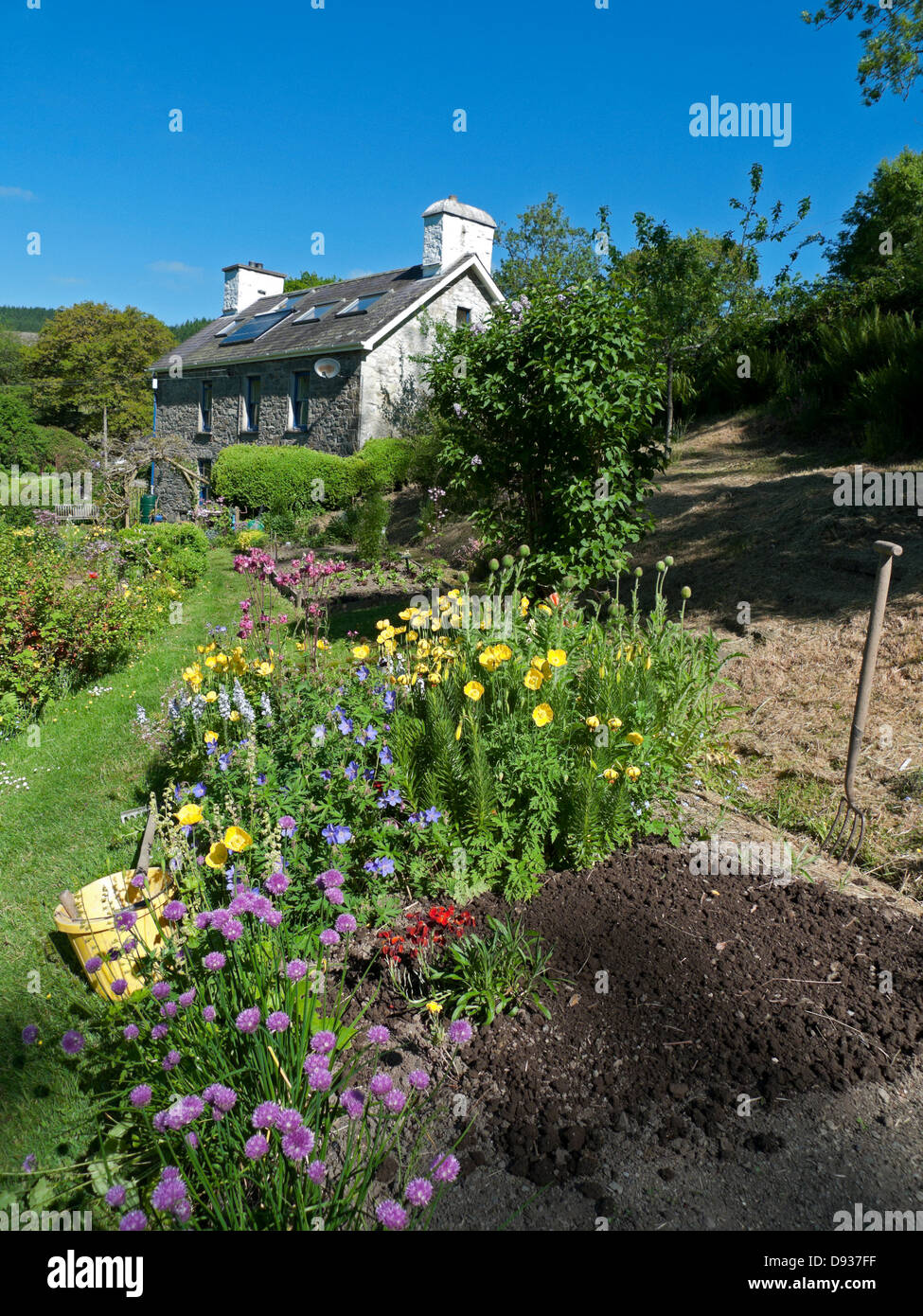 A house and flower garden with bare soil of seedbed ready for planting in summer in Carmarthenshire rural Wales - Stock Image