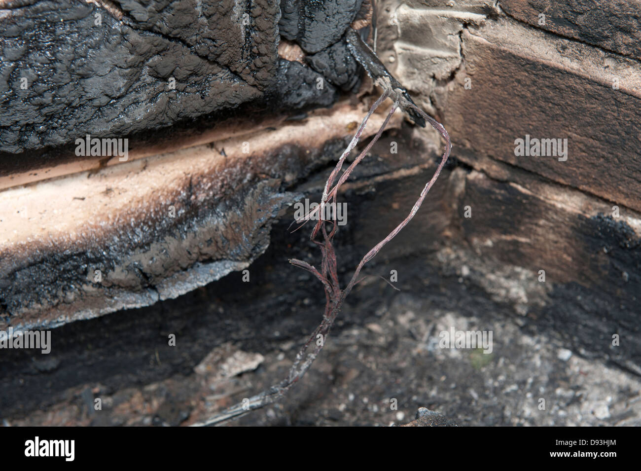 Burnt Electrical Wire Stock Photos House Wiring Strategy Fire Faulty Cable Rodent Chewed Through Accidental Image