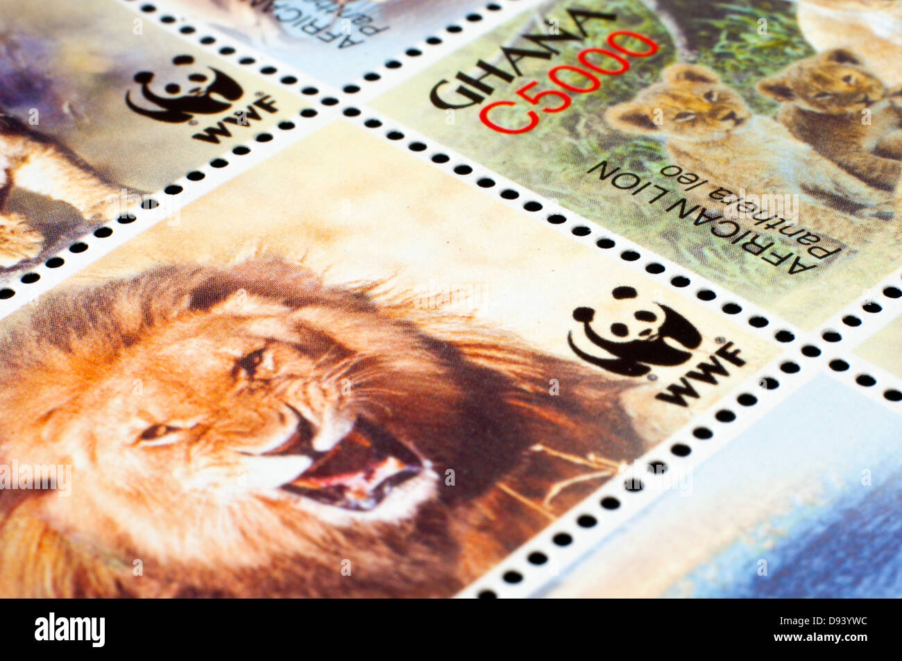 ghanian postage stamps in studio setting - Stock Image