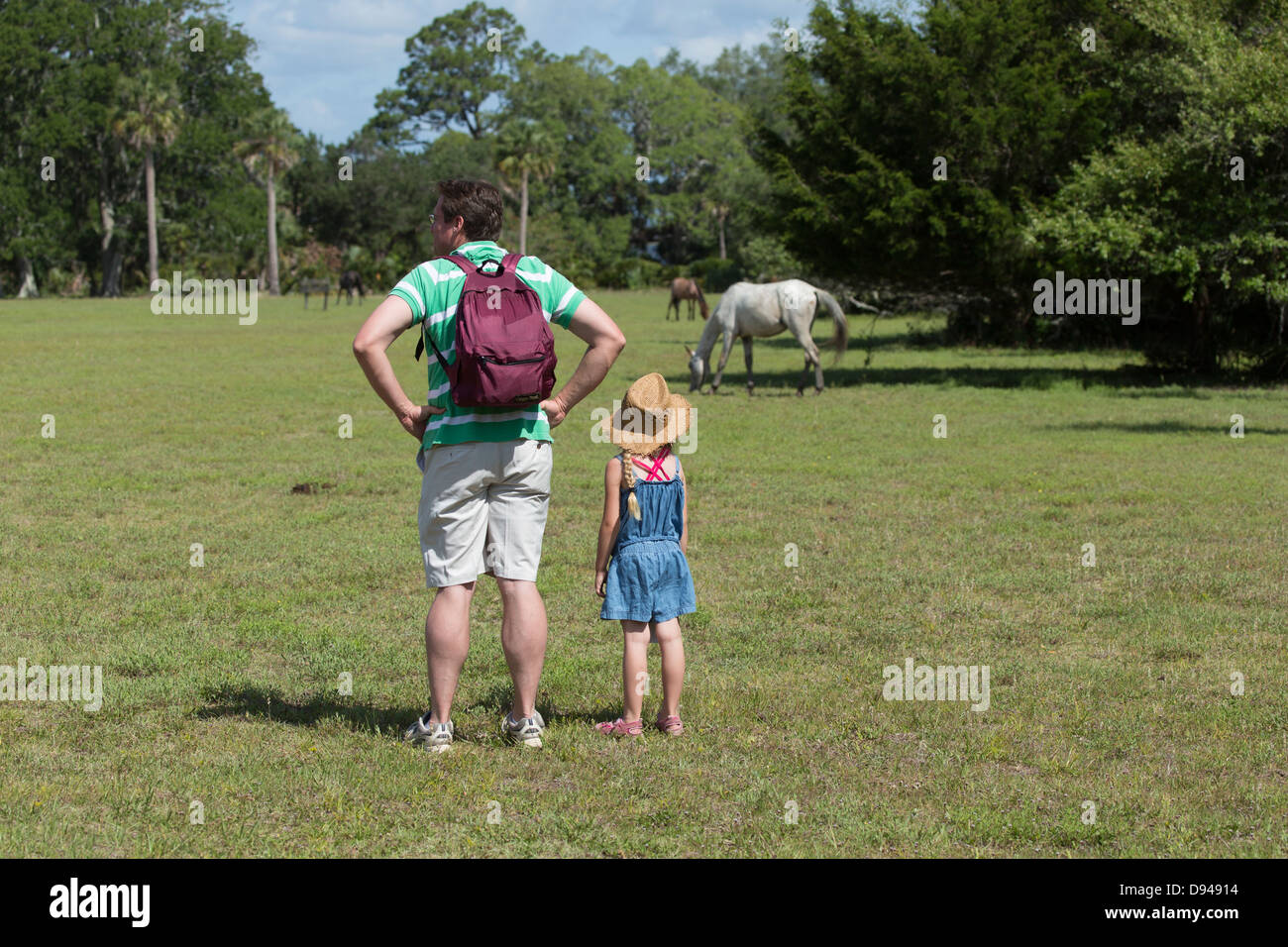 Father and daughter watch the wild horses at Dungeness, Cumberland Island, Georgia Stock Photo