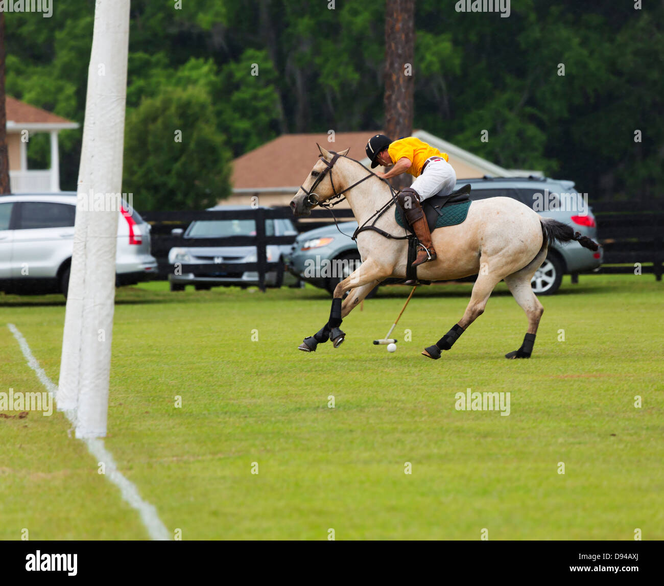 A player leans over and tries to hit the ball with his mallet during a polo match - Stock Image